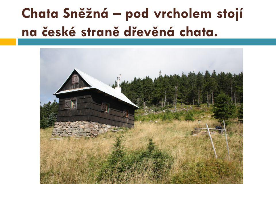 Chata Sněžná – pod vrcholem stojí na české straně dřevěná chata.