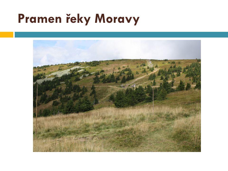 Pramen řeky Moravy