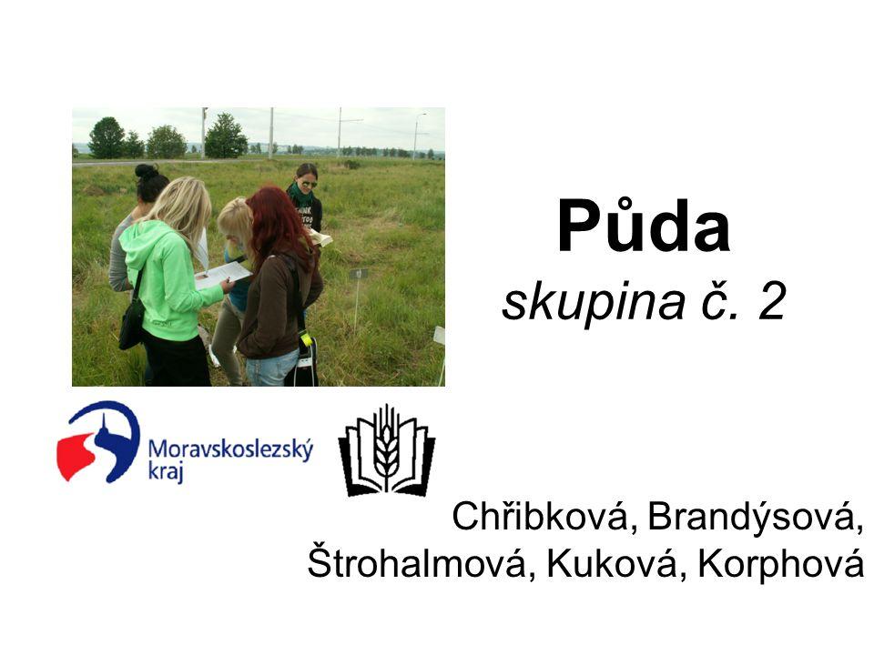 Půda skupina č. 2 Chřibková, Brandýsová, Štrohalmová, Kuková, Korphová