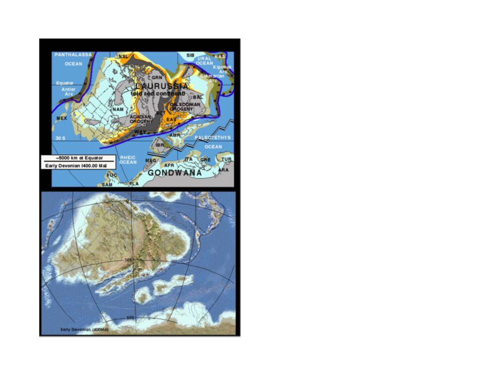 Ordovik – na kambriu se skrytou a na proterozoiku s úhlovou diskordancí Tremadok – marinní a fluviomarinní pískovce, arkózy a droby, výše silicity Arenig až spodní beroun – diferenciace, vulkanogenní sedimenty, hlubokomořské facie břidlic a prachovců, polohy sedimentárních železných rud, mělkovodní křemence Svrchní ordovik – vulkanity vzácné, břidlice, prachovce, méně droby (letenské s.) Kosov – hruběji klastické sedimenty (droby a pískovce), dropstony.