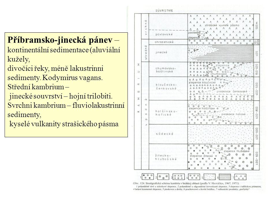 Příbramsko-jinecká pánev – kontinentální sedimentace (aluviální kužely, divočíci řeky, méně lakustrinni sedimenty.