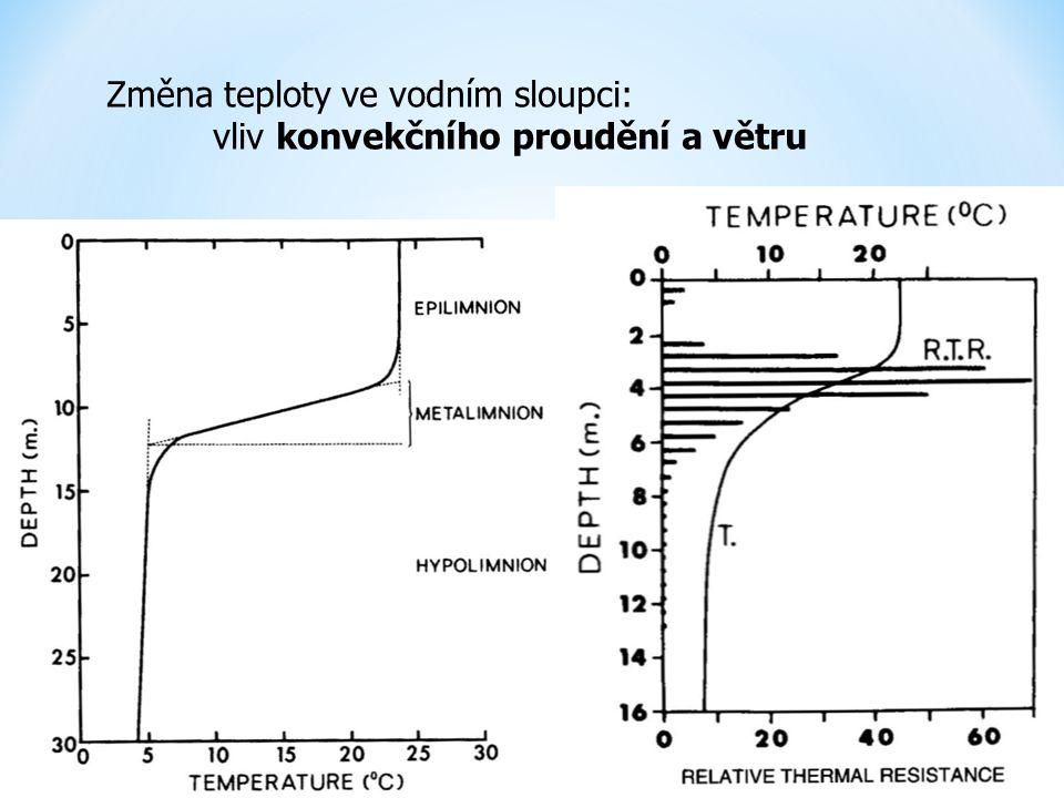 Změna teploty ve vodním sloupci: vliv konvekčního proudění a větru