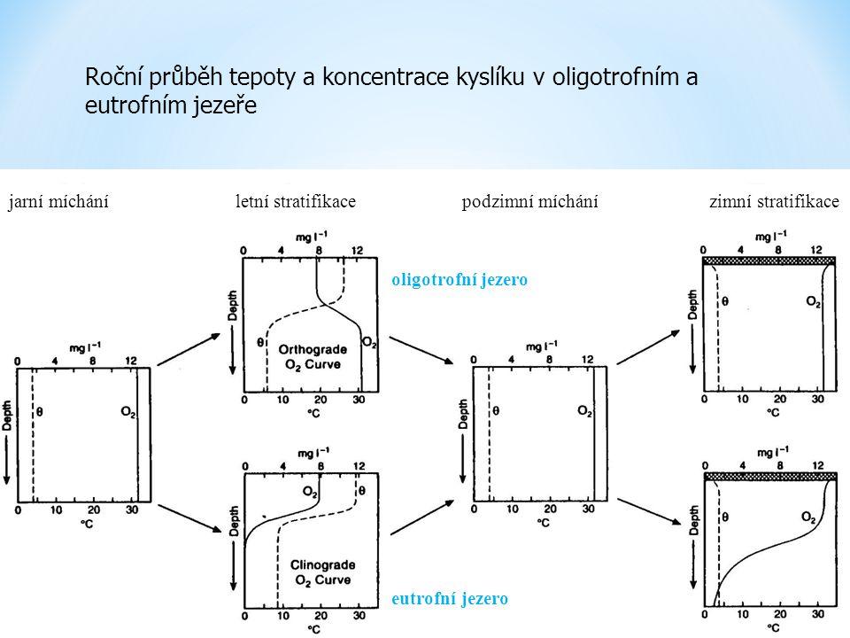 Roční průběh tepoty a koncentrace kyslíku v oligotrofním a eutrofním jezeře jarní mícháníletní stratifikacepodzimní míchánízimní stratifikace oligotro