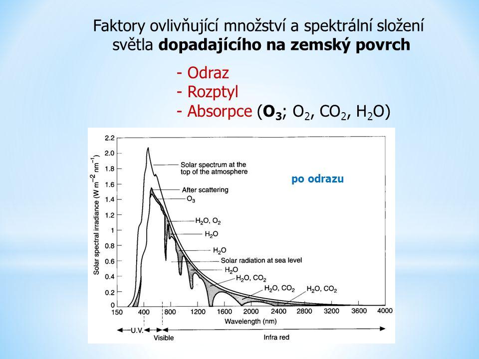Faktory ovlivňující množství a spektrální složení světla dopadajícího na zemský povrch po odrazu - Odraz - Rozptyl - Absorpce (O 3 ; O 2, CO 2, H 2 O)