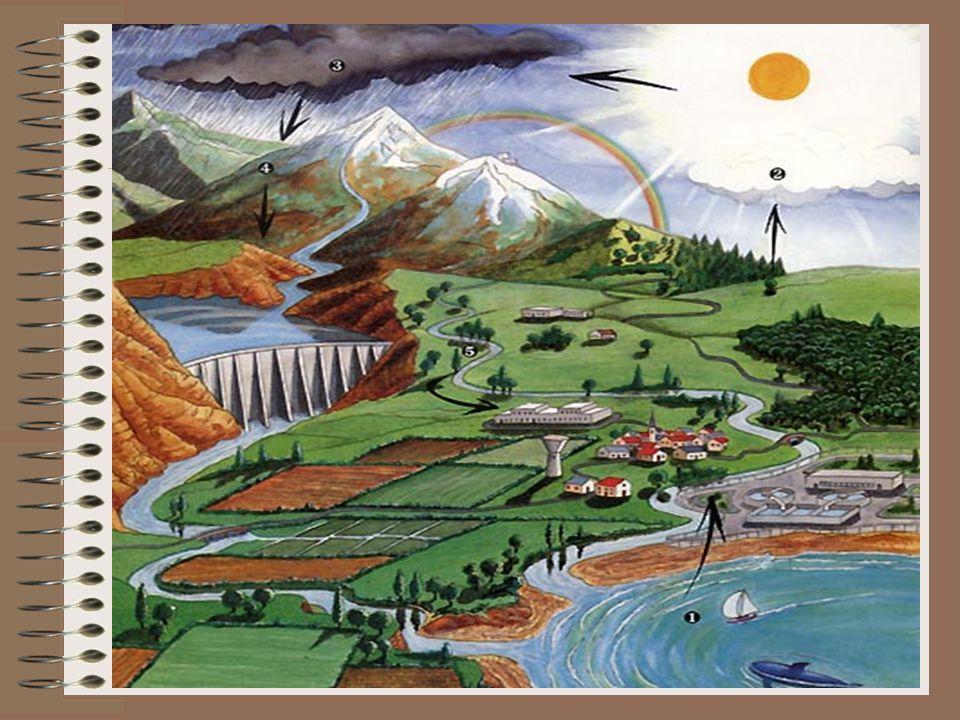 Druhá část vteče do země (vsákne se) jako podzemní voda.Tento cyklus se vždy opakuje a opakuje...