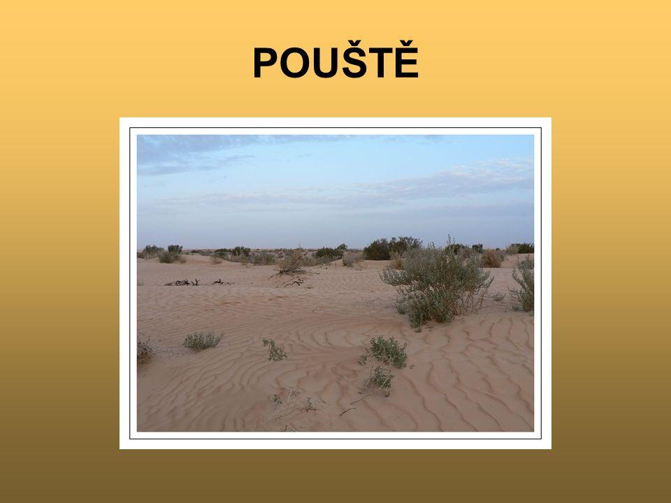 Poušť - je oblast s nedostatkem srážek a velkým vypařováním V pouštích naprší ročně méně jak 200 mm srážek Někde neprší i několik let Nevznikají žádné stálé řeky – bezodtokové oblasti Vádí – suchá koryta v Africe Creek [krík] – obdoba v Austrálii