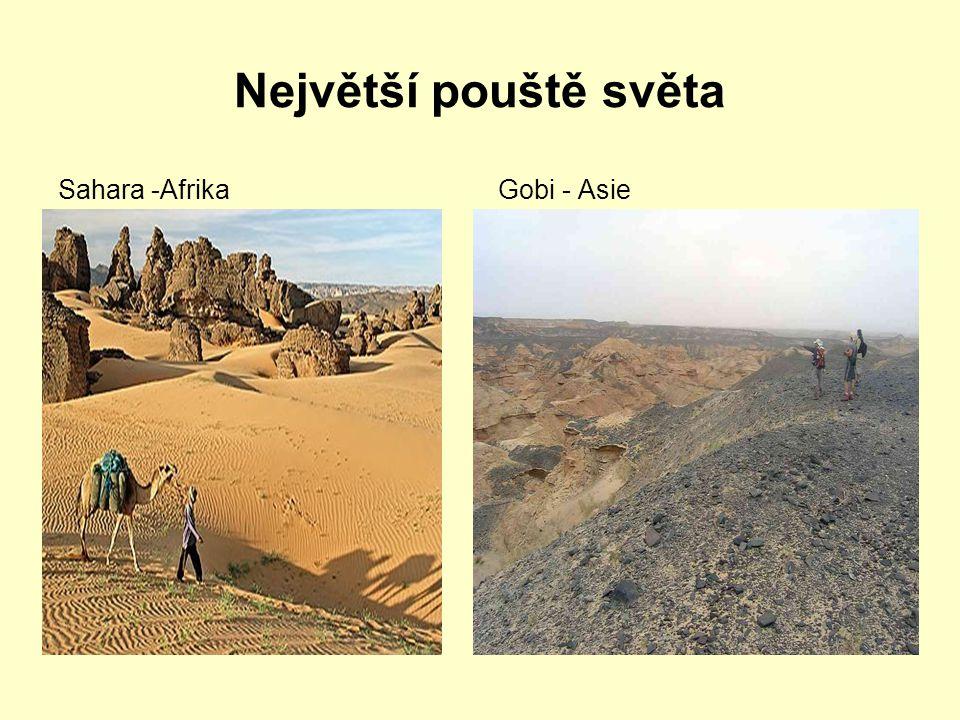 Největší pouště světa Sahara – Afrika Arabská pouštˇ- Afrika Gobi – Asie Patagonská poušť – Jižní Amerika Great Basin – Severní Amerika Velká písečná poušť – Austrálie Kalahari Afrika Atacama – nejsušší místo na Zemi (Jižní Amerika)