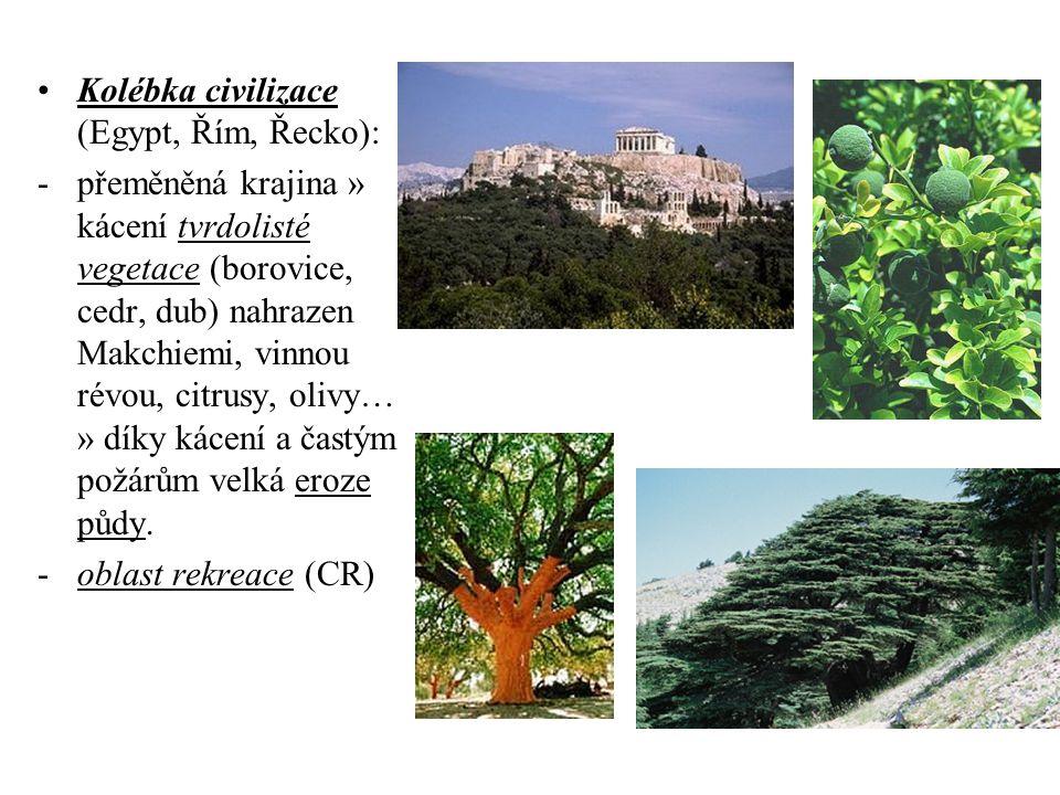 Kolébka civilizace (Egypt, Řím, Řecko): -přeměněná krajina » kácení tvrdolisté vegetace (borovice, cedr, dub) nahrazen Makchiemi, vinnou révou, citrusy, olivy… » díky kácení a častým požárům velká eroze půdy.