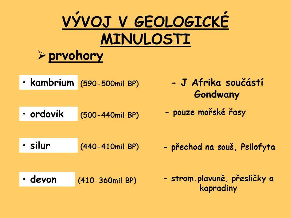 VÝVOJ V GEOLOGICKÉ MINULOSTI  prvohory kambrium (590-500mil BP) ordovik (500-440mil BP) silur (440-410mil BP) devon (410-360mil BP) - J Afrika součástí Gondwany - pouze mořské řasy - přechod na souš, Psilofyta - strom.plavuně, přesličky a kapradiny