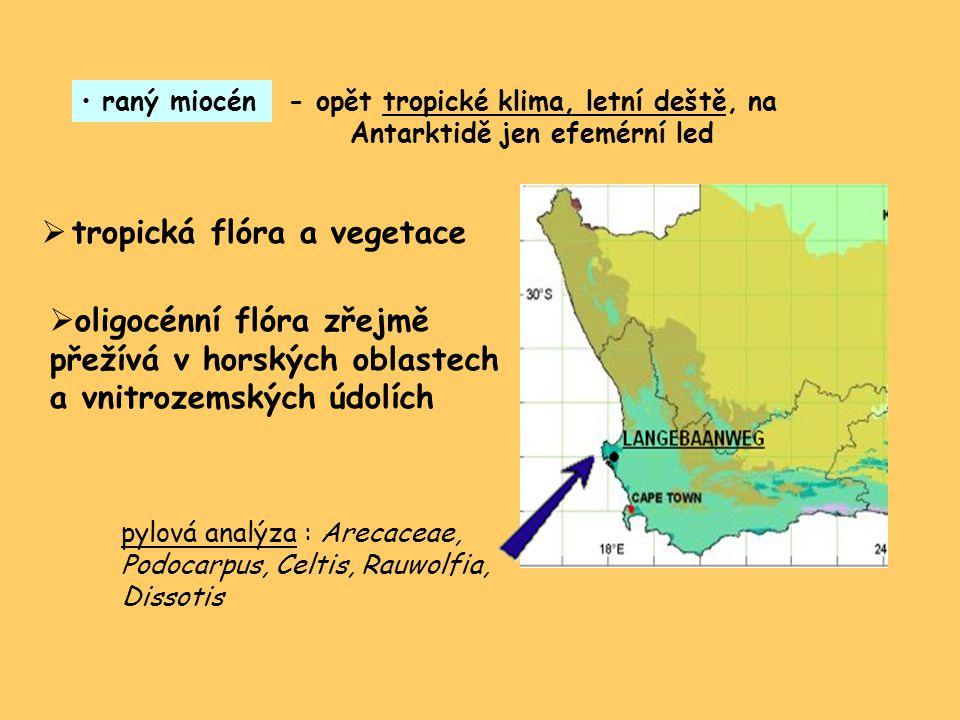 raný miocén- opět tropické klima, letní deště, na Antarktidě jen efemérní led  tropická flóra a vegetace pylová analýza : Arecaceae, Podocarpus, Celtis, Rauwolfia, Dissotis  oligocénní flóra zřejmě přežívá v horských oblastech a vnitrozemských údolích
