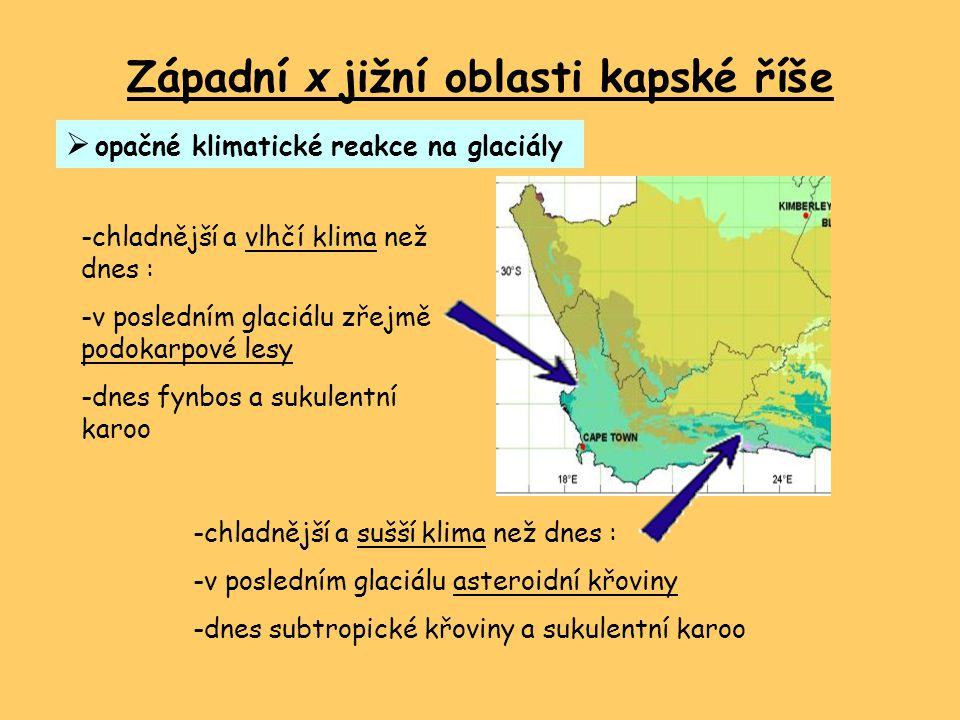 Západní x jižní oblasti kapské říše  opačné klimatické reakce na glaciály -chladnější a vlhčí klima než dnes : -v posledním glaciálu zřejmě podokarpo