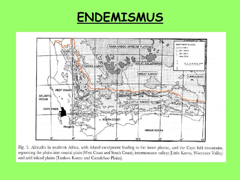 ENDEMISMUS  vysoká úroveň endemismu srovnatelná s ostrovy spíše než s kontinentálními oblastmi  příčiny : geografická a ekologická izolace – nízká m