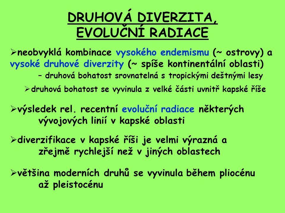DRUHOVÁ DIVERZITA, EVOLUČNÍ RADIACE  neobvyklá kombinace vysokého endemismu (~ ostrovy) a vysoké druhové diverzity (~ spíše kontinentální oblasti) –