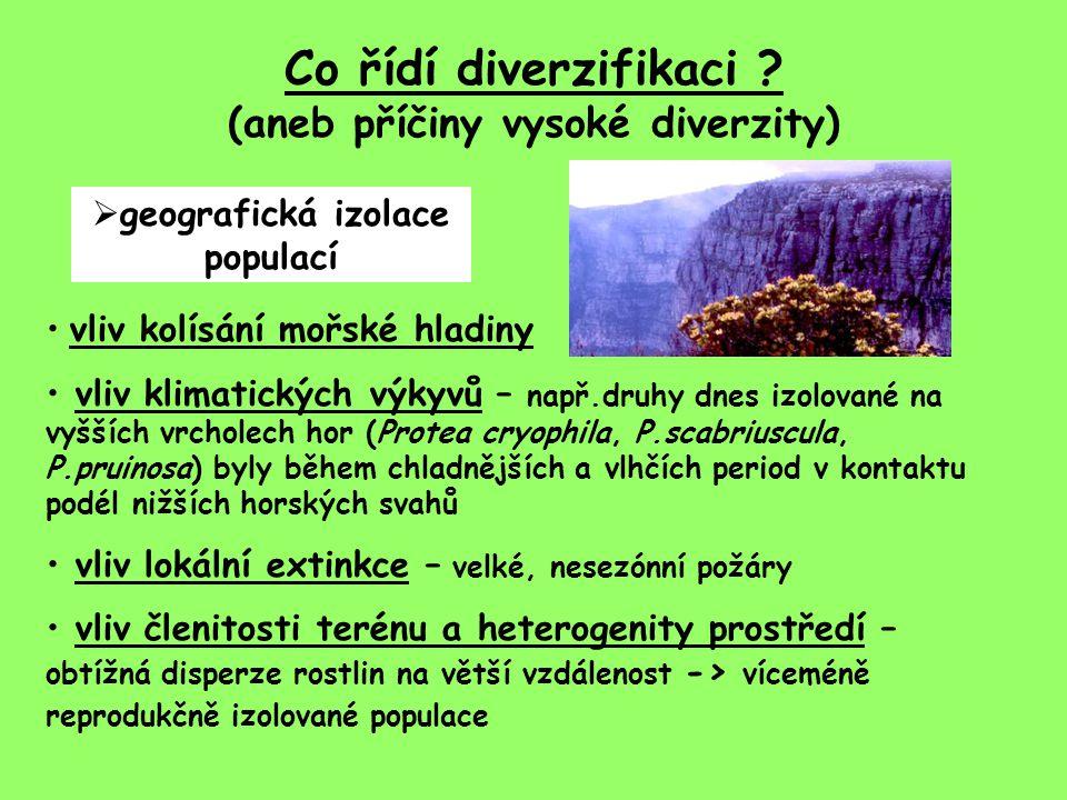 Co řídí diverzifikaci ? (aneb příčiny vysoké diverzity)  geografická izolace populací vliv kolísání mořské hladiny vliv klimatických výkyvů – např.dr