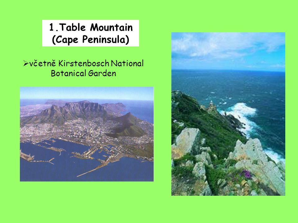 1.Table Mountain (Cape Peninsula)  včetně Kirstenbosch National Botanical Garden