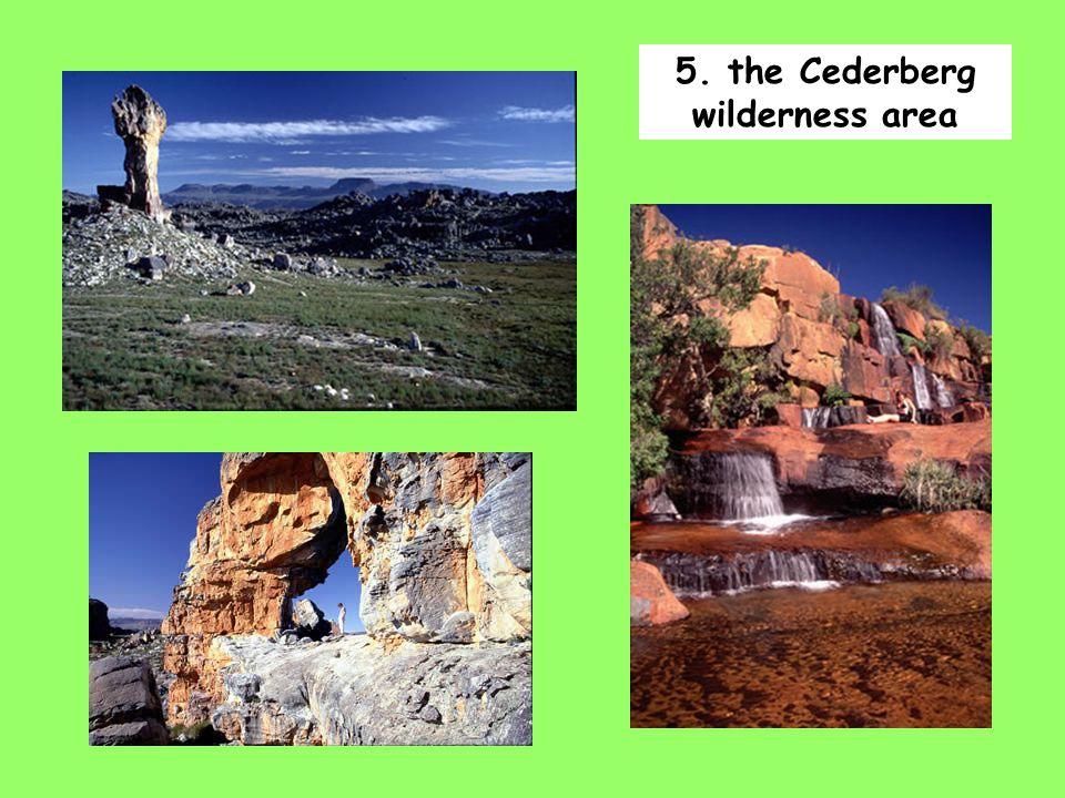 5. the Cederberg wilderness area