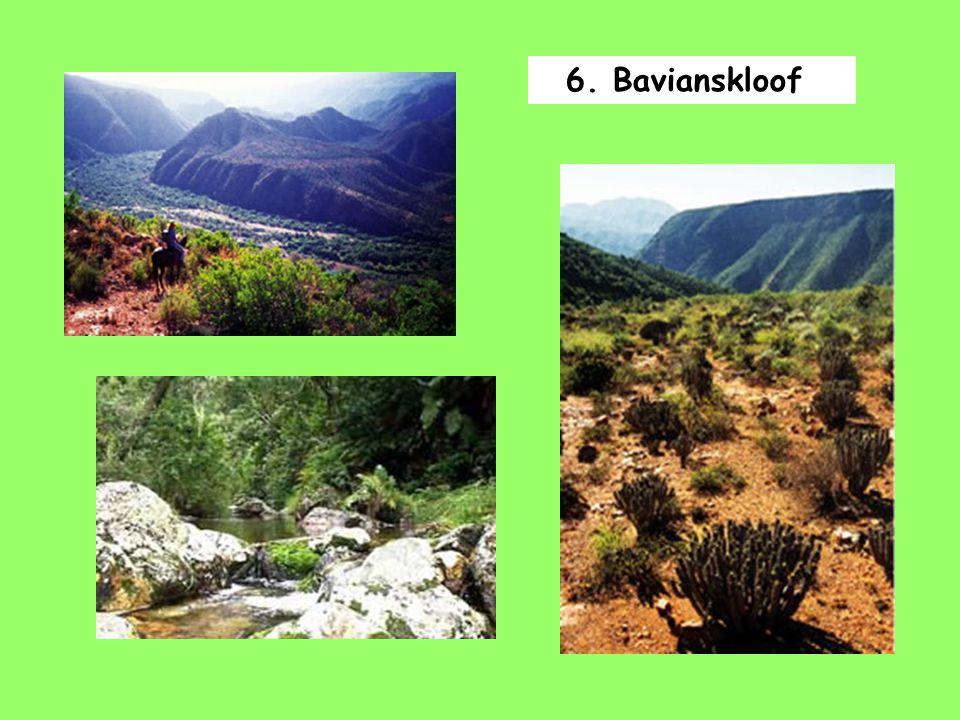 6. Bavianskloof