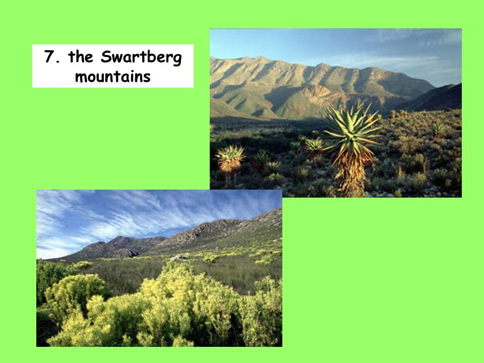 7. the Swartberg mountains