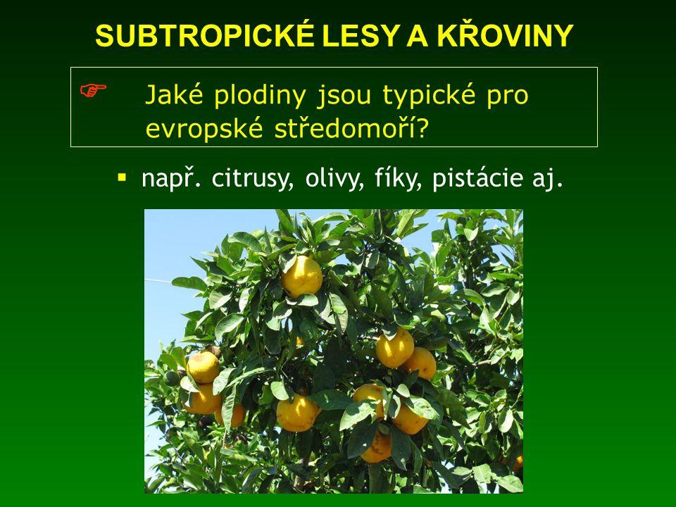 SUBTROPICKÉ LESY A KŘOVINY  Jaké plodiny jsou typické pro evropské středomoří?  např. citrusy, olivy, fíky, pistácie aj.