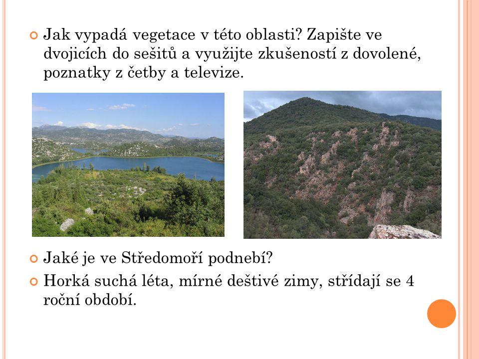 Jak vypadá vegetace v této oblasti? Zapište ve dvojicích do sešitů a využijte zkušeností z dovolené, poznatky z četby a televize. Jaké je ve Středomoř