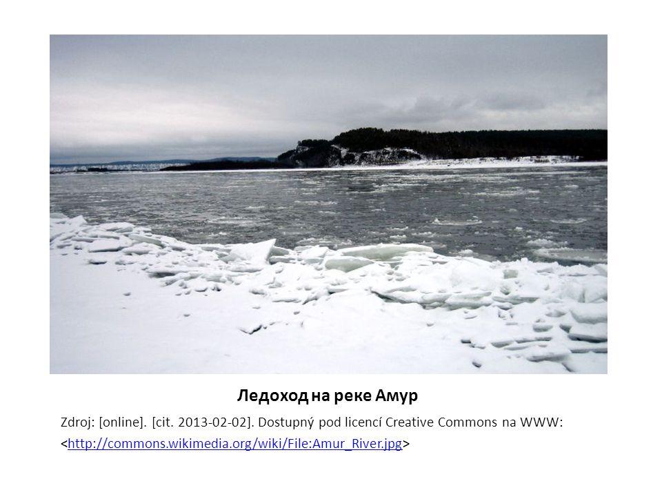 Ледоход на реке Амур Zdroj: [online]. [cit. 2013-02-02].