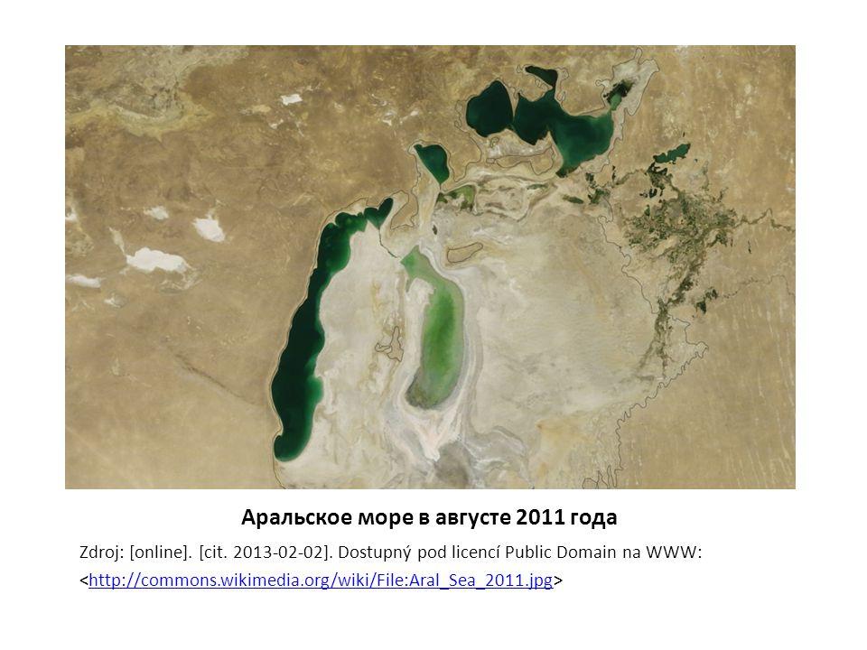 Аральское море в августе 2011 года Zdroj: [online].