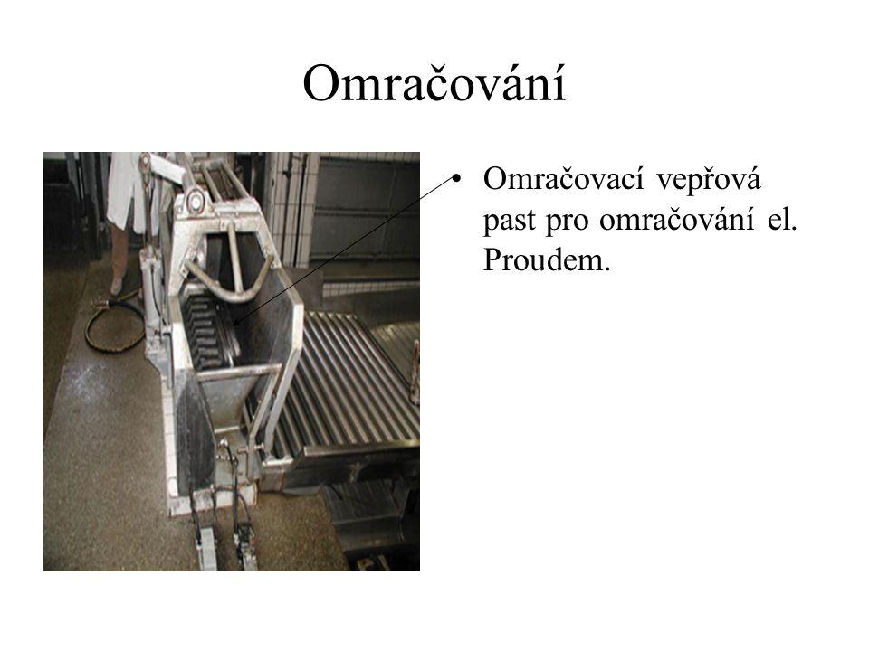 Omračování CO2 omračovací zařízení s vykrvovacím elevátorem pro prasata.