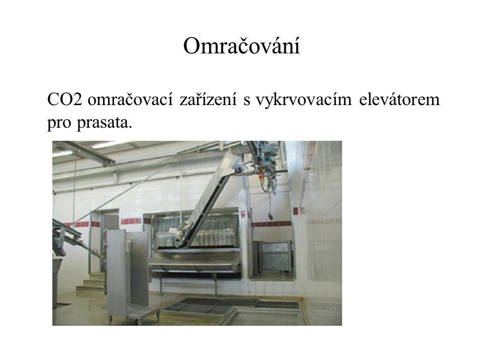 Jatečné opracování Dočištění po vykrvení: zvonkem Plynem.