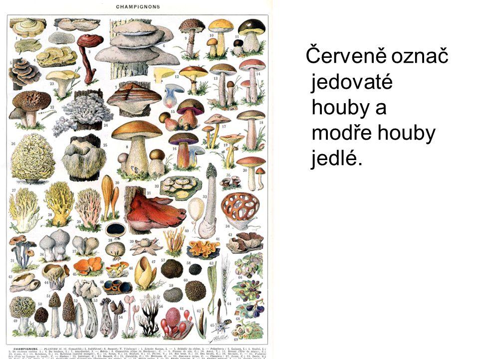 Červeně označ jedovaté houby a modře houby jedlé.