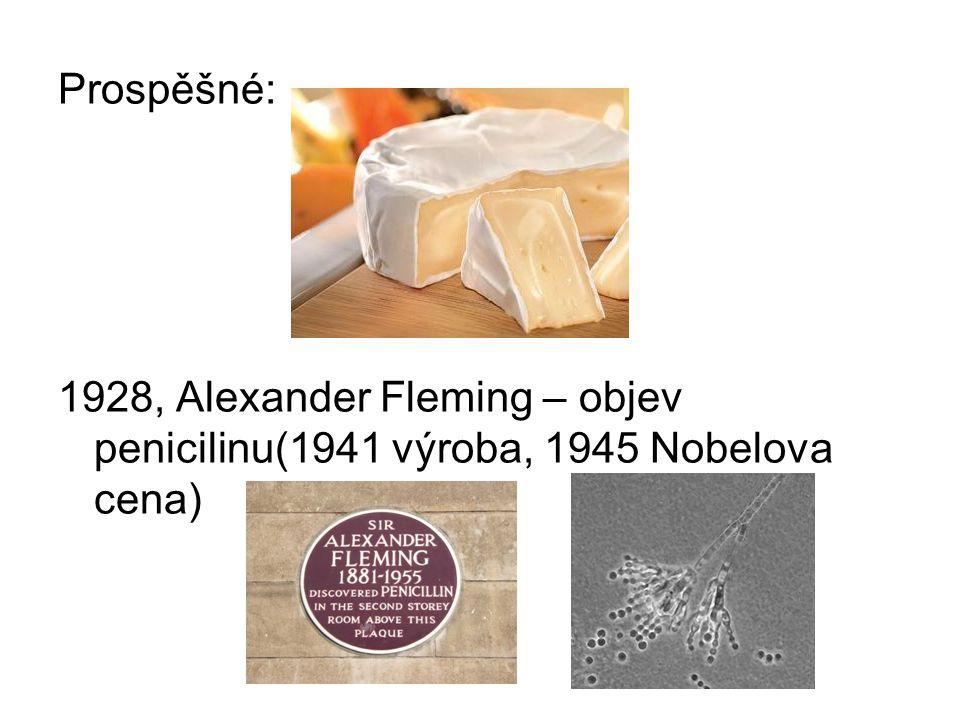 Prospěšné: 1928, Alexander Fleming – objev penicilinu(1941 výroba, 1945 Nobelova cena)