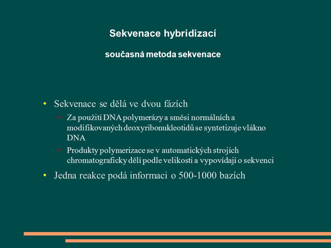 Sekvenace se dělá ve dvou fázích Za použití DNA polymerázy a směsi normálních a modifikovaných deoxyribonukleotidů se syntetizuje vlákno DNA Produkty