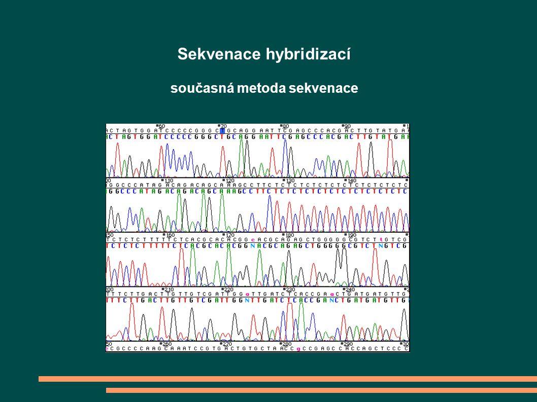 Sekvenace hybridizací současná metoda sekvenace