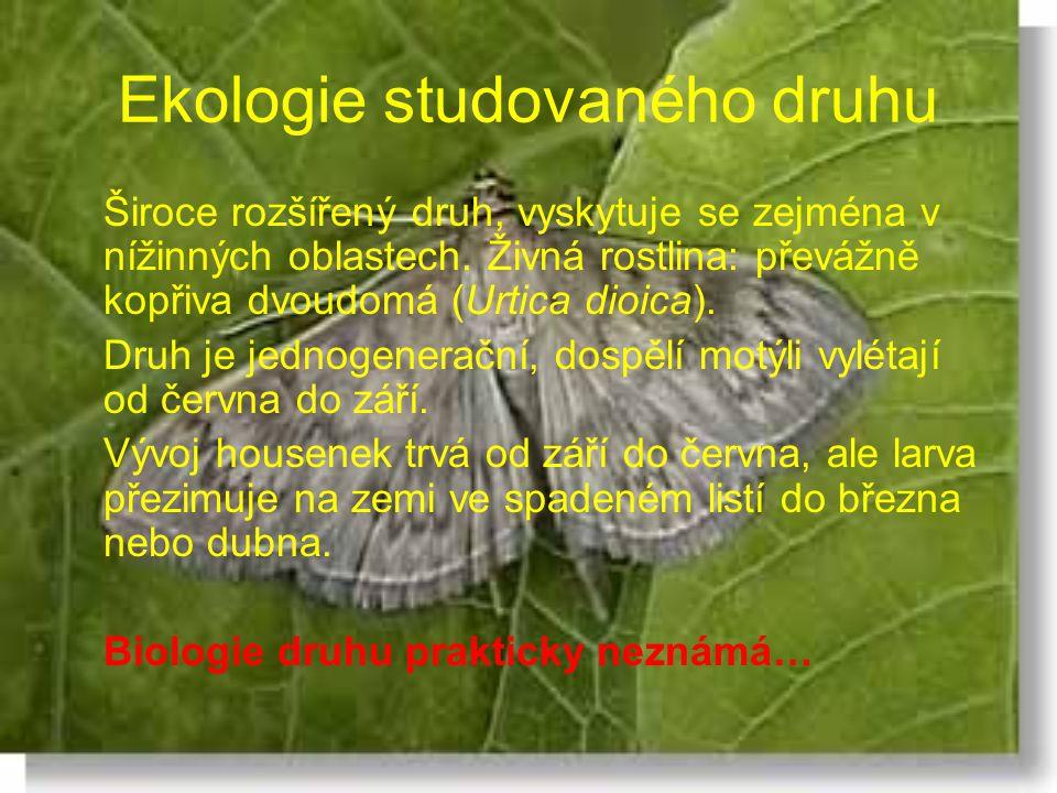 Ekologie studovaného druhu Široce rozšířený druh, vyskytuje se zejména v nížinných oblastech. Živná rostlina: převážně kopřiva dvoudomá (Urtica dioica