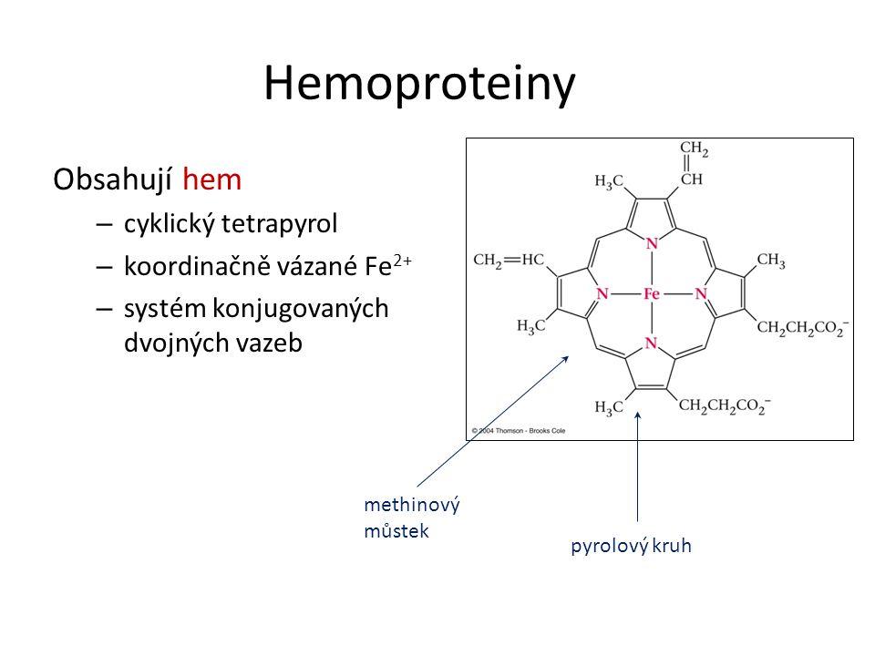 Hemoproteiny Obsahují hem – cyklický tetrapyrol – koordinačně vázané Fe 2+ – systém konjugovaných dvojných vazeb methinový můstek pyrolový kruh
