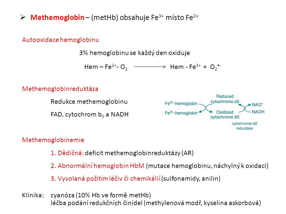  Methemoglobin – (metHb) obsahuje Fe 3+ místo Fe 2+ Autooxidace hemoglobinu 3% hemoglobinu se každý den oxiduje Hem – Fe 2+ - O 2 Hem - Fe 3+ + O 2 - Methemoglobinreduktáza Redukce methemoglobinu FAD, cytochrom b 5 a NADH Methemoglobinemie 1.