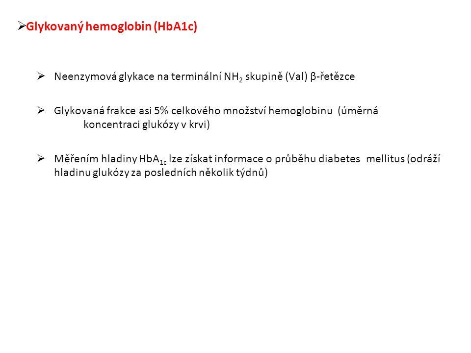  Glykovaný hemoglobin (HbA1c)  Neenzymová glykace na terminální NH 2 skupině (Val) β-řetězce  Glykovaná frakce asi 5% celkového množství hemoglobinu (úměrná koncentraci glukózy v krvi)  Měřením hladiny HbA 1c lze získat informace o průběhu diabetes mellitus (odráží hladinu glukózy za posledních několik týdnů)
