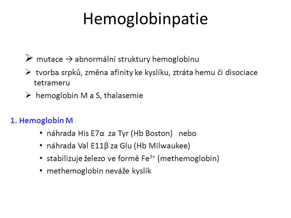 Hemoglobinpatie  mutace → abnormální struktury hemoglobinu  tvorba srpků, změna afinity ke kyslíku, ztráta hemu či disociace tetrameru  hemoglobin M a S, thalasemie 1.