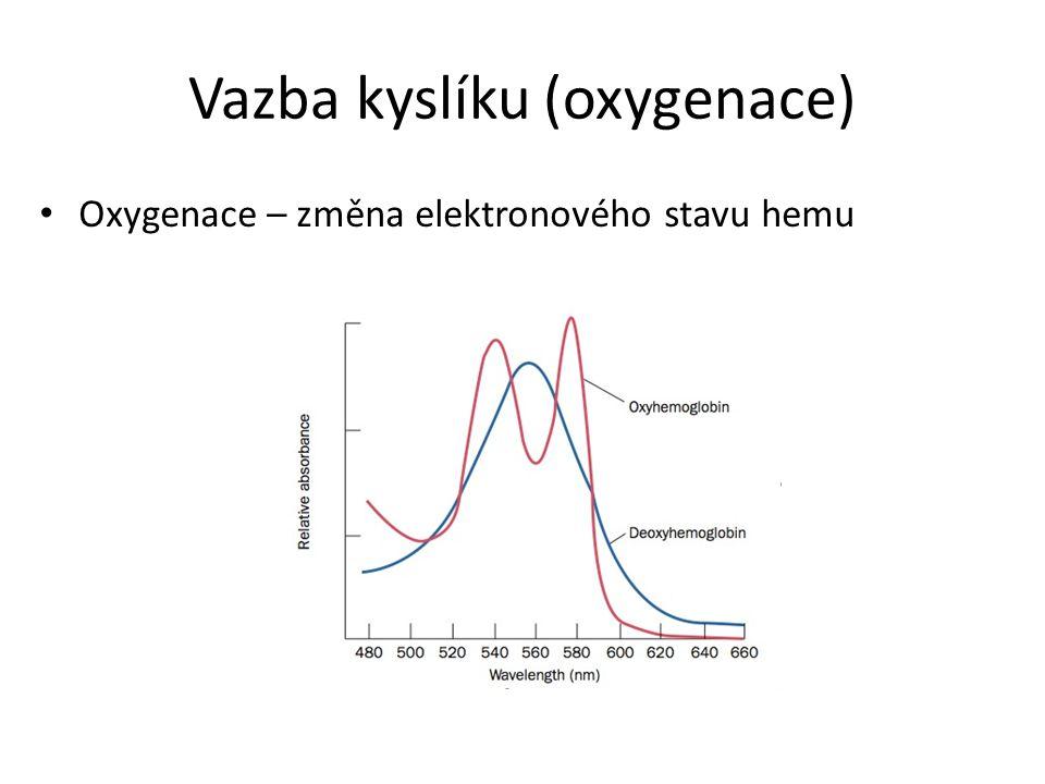 Vazba kyslíku (oxygenace) Oxygenace – změna elektronového stavu hemu