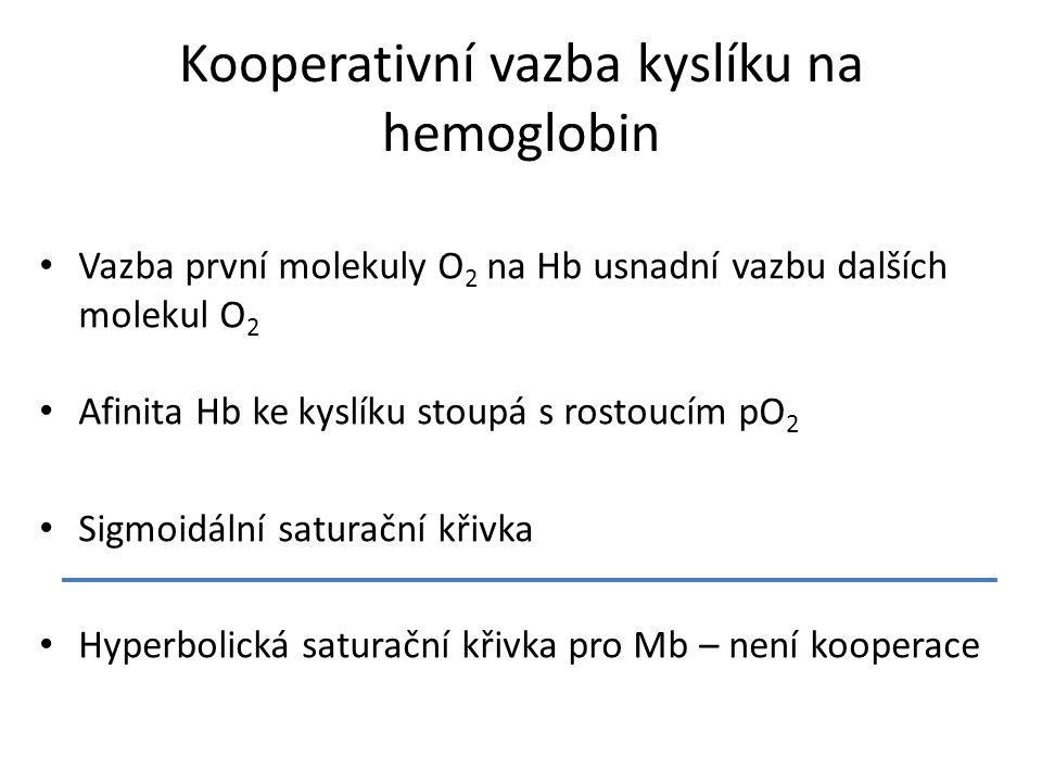 Vazba první molekuly O 2 na Hb usnadní vazbu dalších molekul O 2 Afinita Hb ke kyslíku stoupá s rostoucím pO 2 Sigmoidální saturační křivka Hyperbolická saturační křivka pro Mb – není kooperace Kooperativní vazba kyslíku na hemoglobin