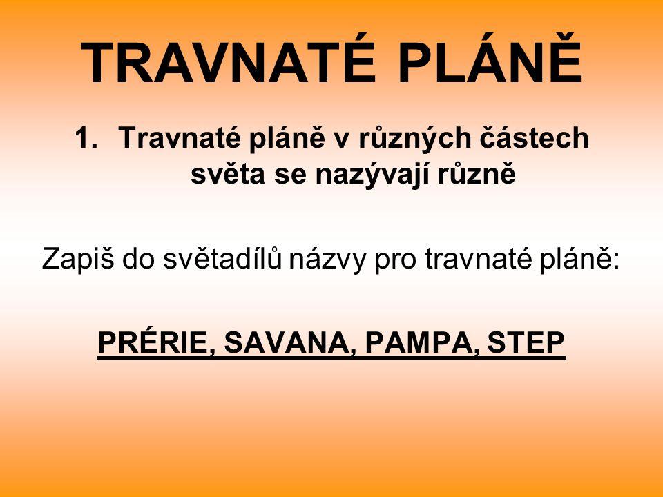 1.Travnaté pláně v různých částech světa se nazývají různě Zapiš do světadílů názvy pro travnaté pláně: PRÉRIE, SAVANA, PAMPA, STEP