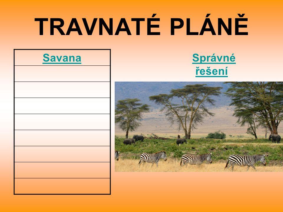 TRAVNATÉ PLÁNĚ Savana Správné řešeníSprávné řešení
