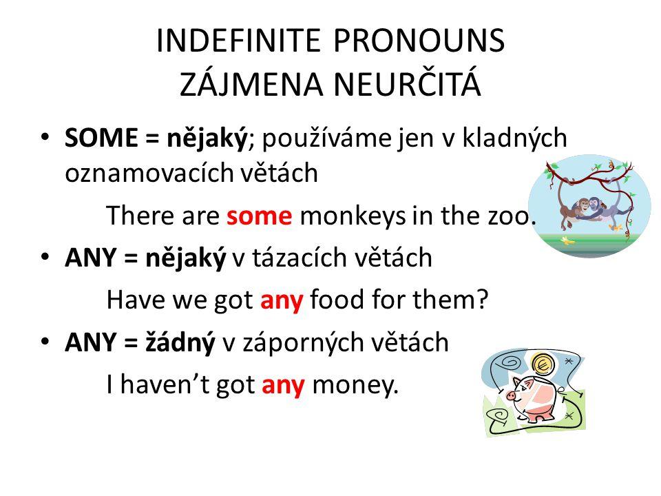 INDEFINITE PRONOUNS ZÁJMENA NEURČITÁ SOME = nějaký; používáme jen v kladných oznamovacích větách There are some monkeys in the zoo.