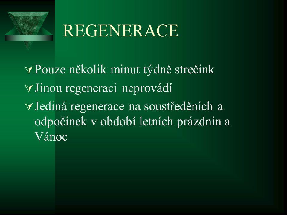 REGENERACE  Pouze několik minut týdně strečink  Jinou regeneraci neprovádí  Jediná regenerace na soustředěních a odpočinek v období letních prázdni