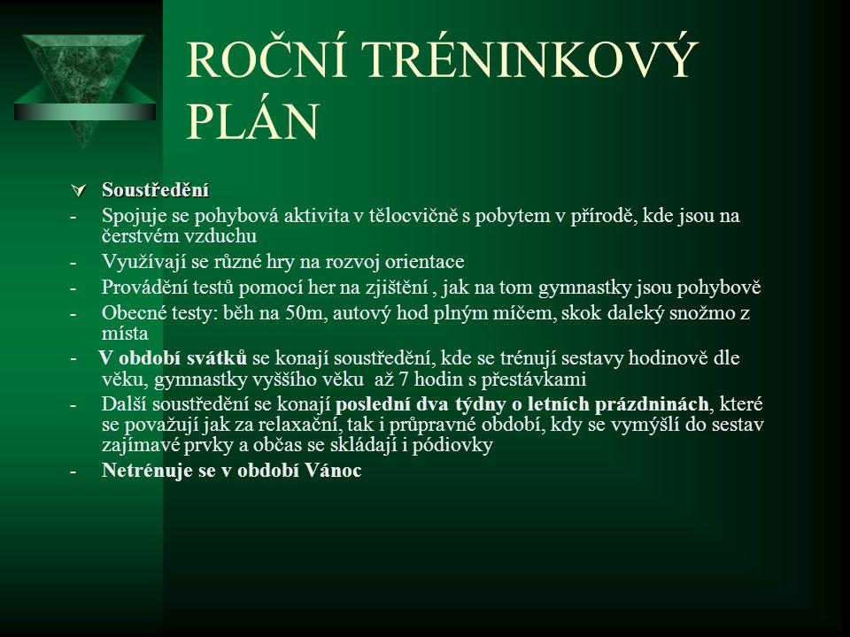 TÝDENNÍ TRÉNINKOVÝ PLÁN v přípravném období 30.1.– 4.
