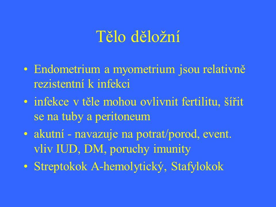 Tělo děložní Endometrium a myometrium jsou relativně rezistentní k infekci infekce v těle mohou ovlivnit fertilitu, šířit se na tuby a peritoneum akut