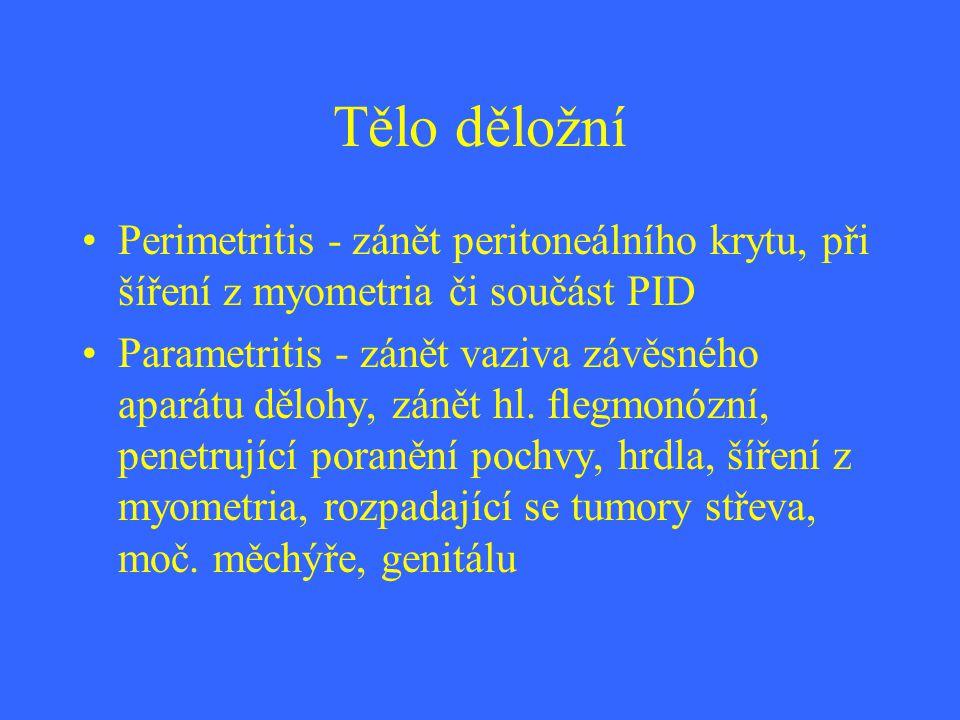 Tělo děložní Perimetritis - zánět peritoneálního krytu, při šíření z myometria či součást PID Parametritis - zánět vaziva závěsného aparátu dělohy, zá