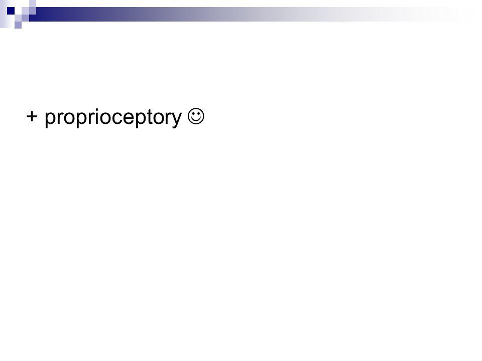 + proprioceptory