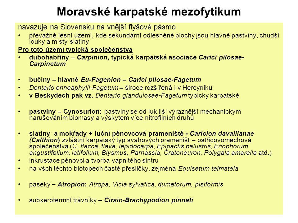 Moravské karpatské mezofytikum navazuje na Slovensku na vnější flyšové pásmo převážně lesní území, kde sekundární odlesněné plochy jsou hlavně pastvin