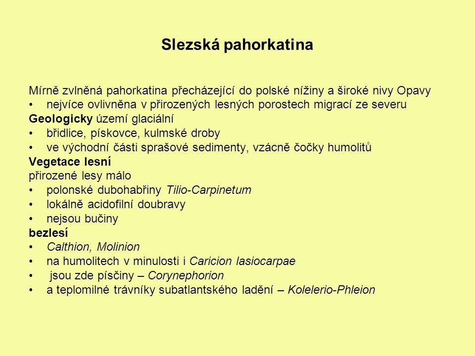 Slezská pahorkatina Mírně zvlněná pahorkatina přecházející do polské nížiny a široké nivy Opavy nejvíce ovlivněna v přirozených lesných porostech migr
