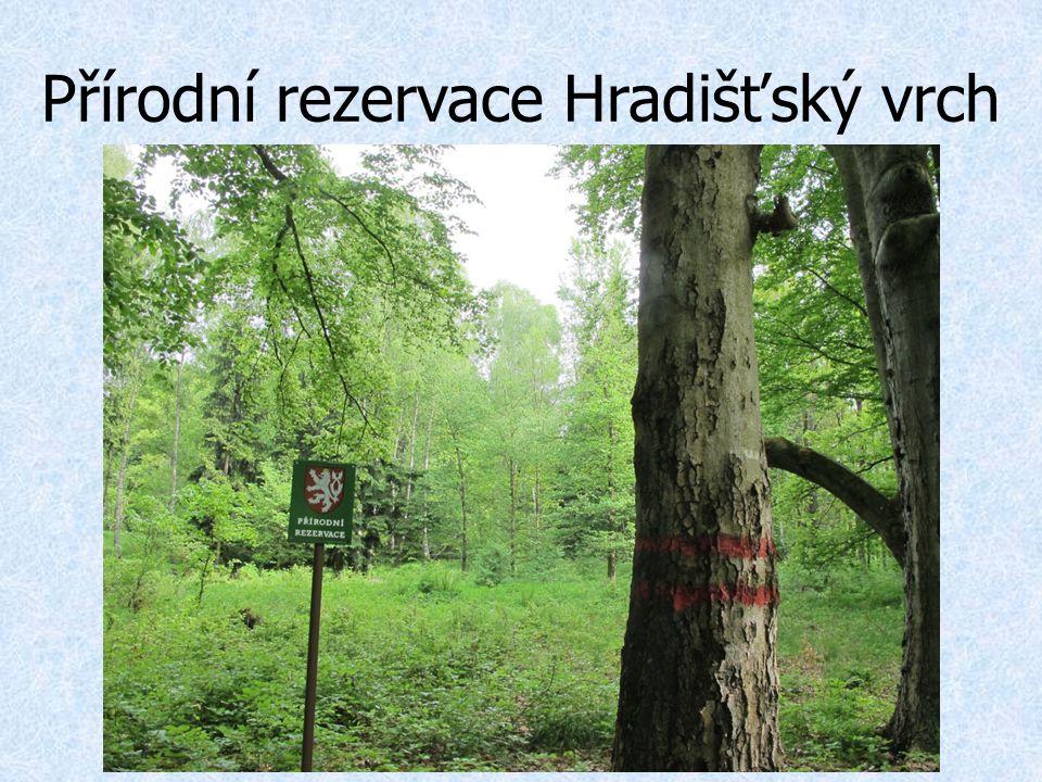 Přírodní rezervace Hradišťský vrch